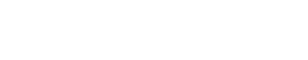 steam giant professional carpet cleaning
